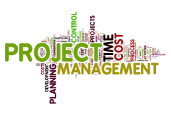 How to handle projects without a project manager/project manager{{}}