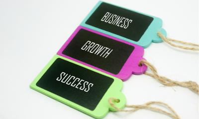 Three multicoloured wooden tags with 'BUSINESS', 'GROWTH', and 'SUCCESS' written on them