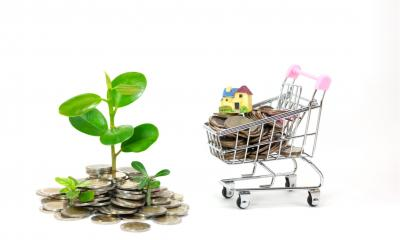 Young plant growing on pile of coins next to shopping trolley to illustrate a start up