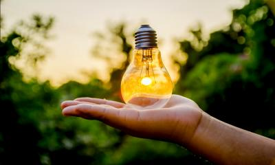 Hand holding a lightbulb with greenery in the background