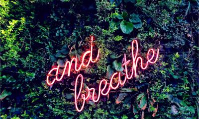 Neon sign saying And breathe against a backgroud of jungle leaves